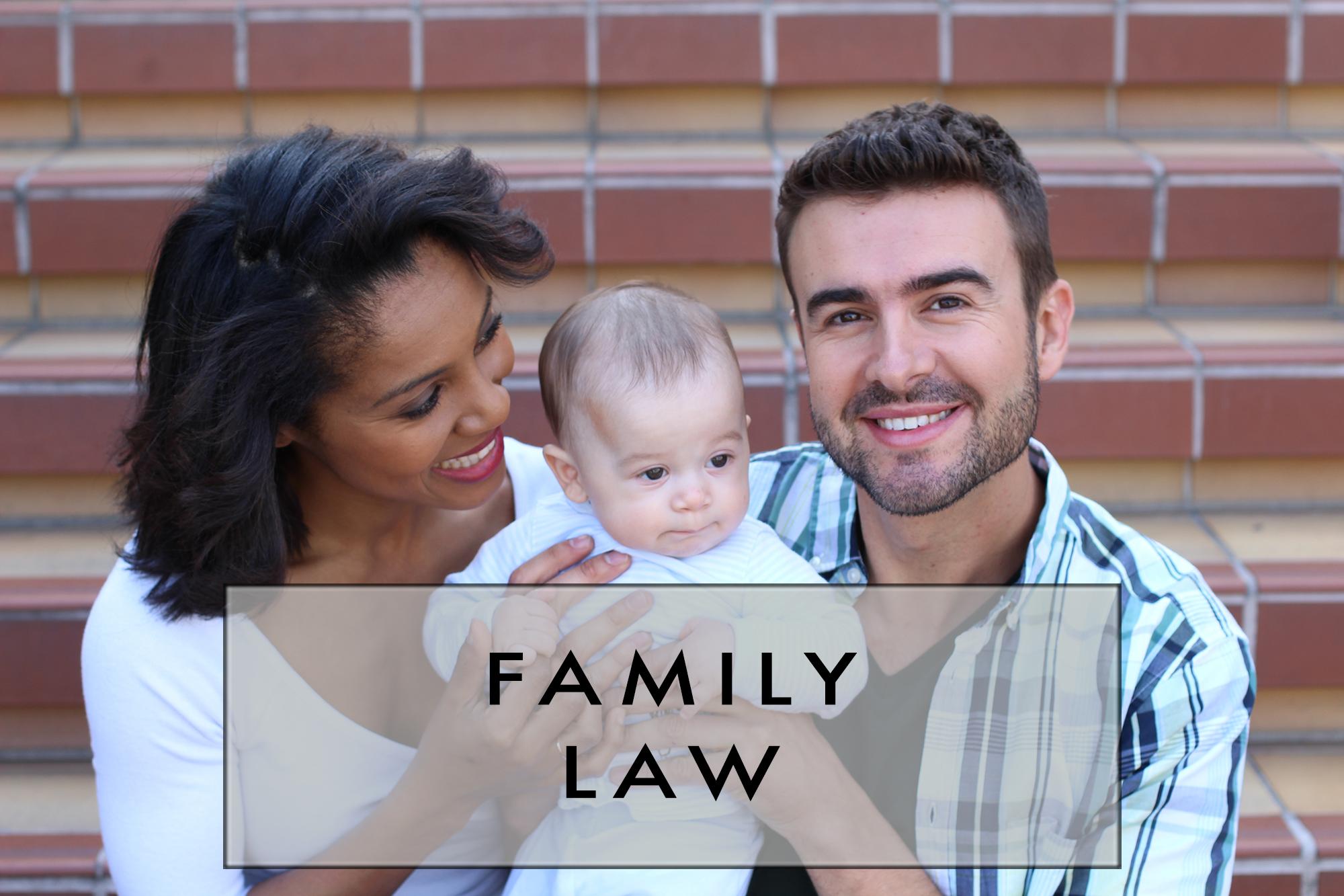 FAMILY LAW TITLE IMAGE V5